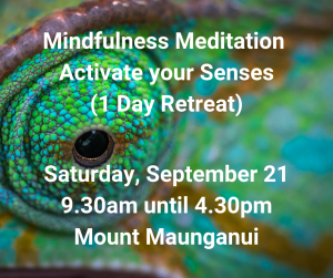 Mindfulness Meditation - Activate your Senses (1Day Retreat)